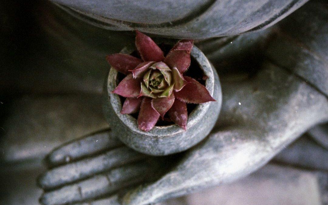Meditar con barro: una experiencia que te ayuda a fluir.