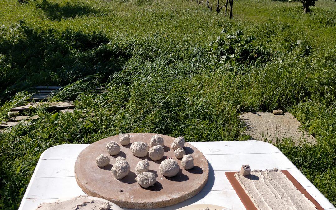 clases de cerámica en la naturaleza